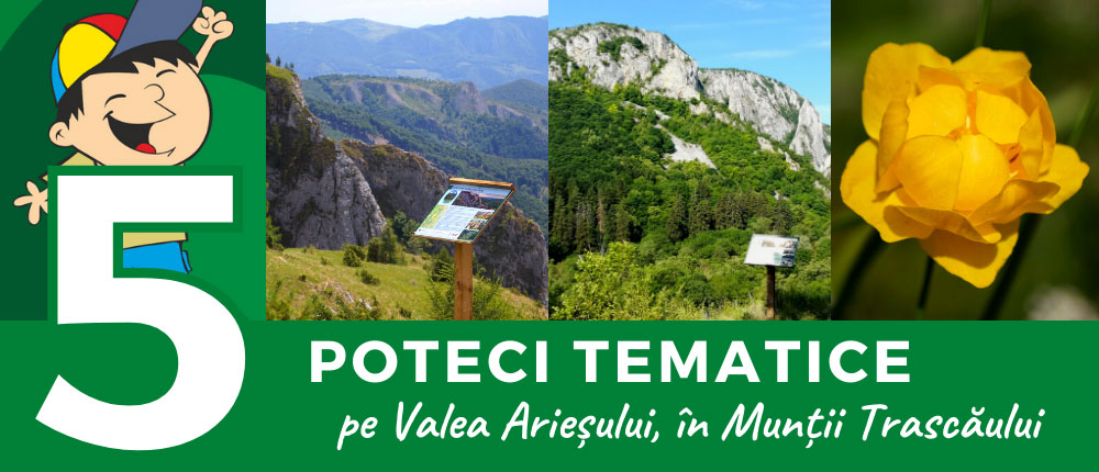 5 poteci tematice pe Valea Arieșului