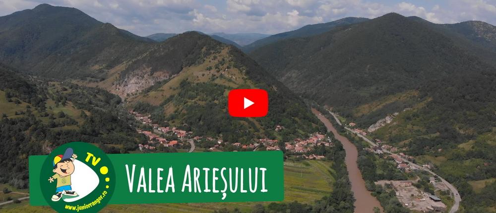 Valea Ariesului 2019 (video)